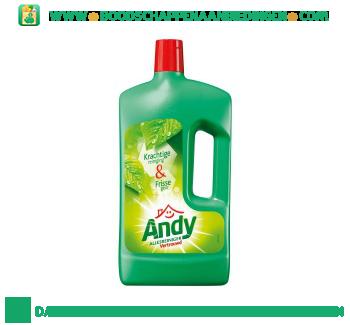 Andy Allesreiniger vertrouwd aanbieding