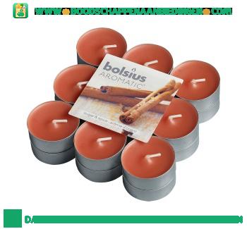 Bolsius Geurtheelichten sugar & spice aanbieding