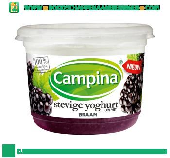 Stevige yoghurt braam aanbieding