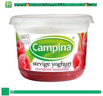 Campina Stevige yoghurt framboos rabarber aanbieding