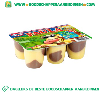 Dr. Oetker Paula mini vanillevla met chocoladevlekken aanbieding