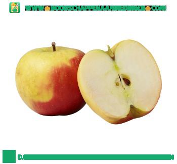 Elstar appel aanbieding