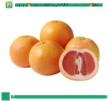 Grapefruit aanbieding