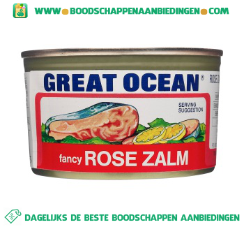 Great ocean Fancy rose zalm aanbieding
