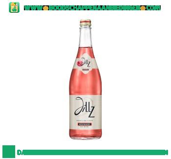 Jillz Raspberry magnumfles aanbieding