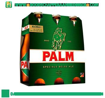 Palm aanbieding