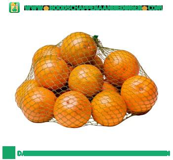 Perssinaasappels aanbieding