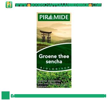 Piramide Groene thee met sencha aanbieding