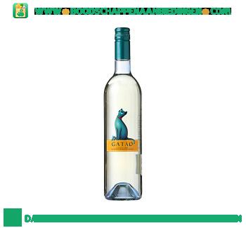 Portugal Gatão vino verde aanbieding