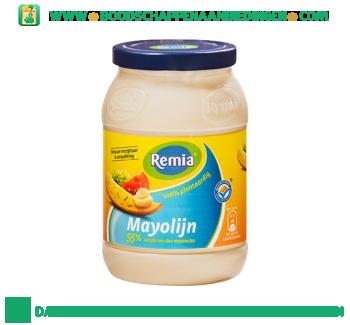 Remia Mayolijn aanbieding