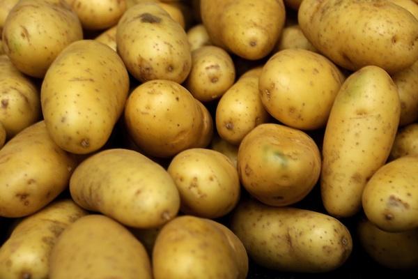 aardappelen en groente en fruit